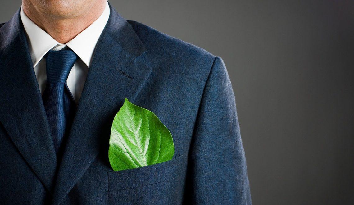 L-eco-entrepreneuriat-et-les-aides-de-l-etat.jpg